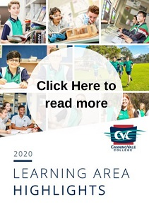 Learning Area Highlights 2020